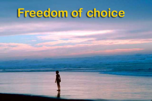 Freedom of choice beach pic